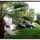 Cameringo_20150912_081814 (Copy)