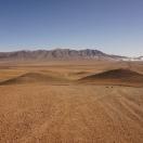desert start